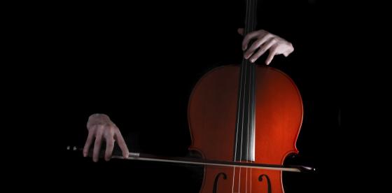 Beethoven herzogenberg for Chambre de musique