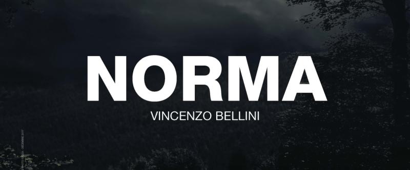 Norma, du 16 au 22 février à l'Opéra